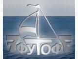 Логотип 7 футов